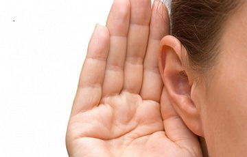 Emberi hallósejteket alkottak Svájcban